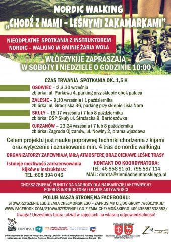 Plakat nordic walking na fb