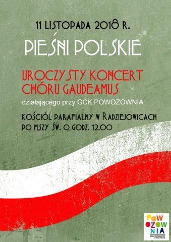 koncert_ Radziejowice 11 11