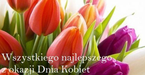 zyczenia kolorowe tulipany z okazji Dnia Kobiet